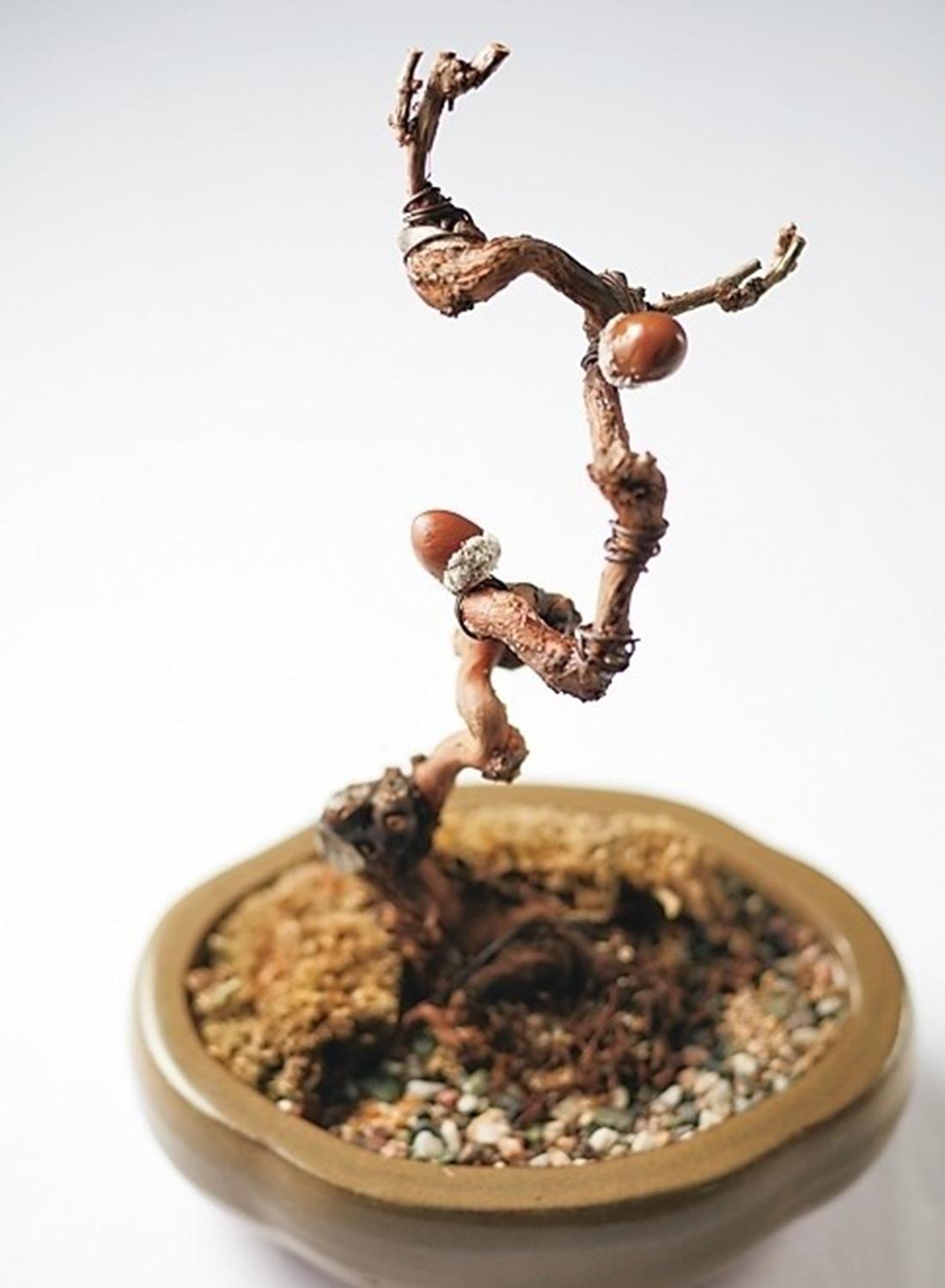 ブドウの木から実を収穫するイメージのアミューズ。