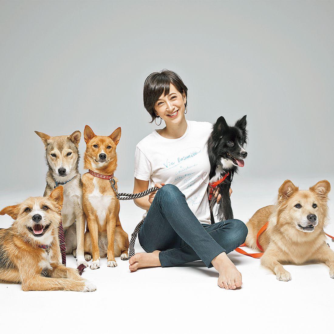 クリステル・ヴィ・アンサンブルで関わっている犬たちtp