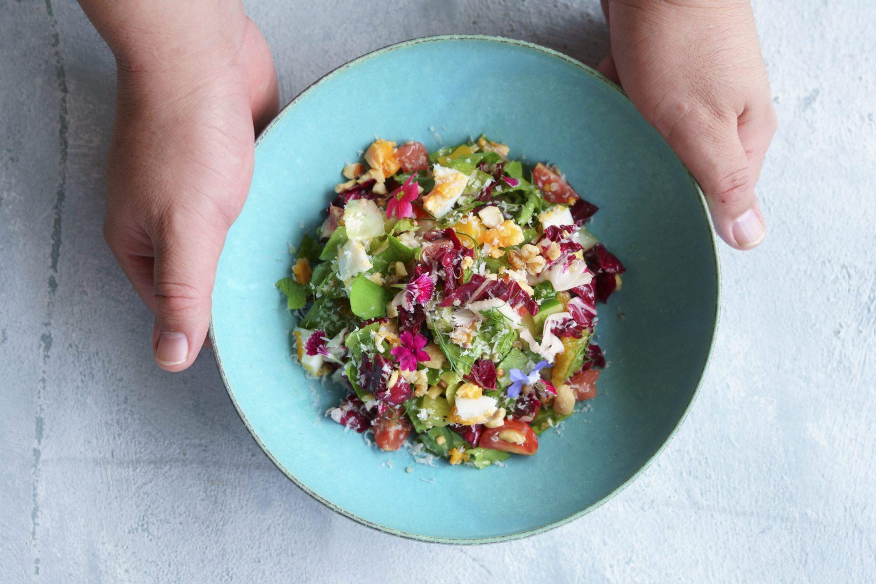 hotels salada